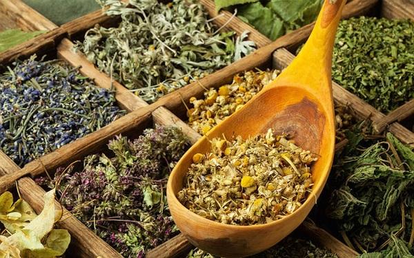 Лекарственные травы для домашней аптечки
